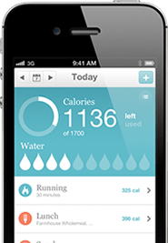 Calorie Counter App for iPhone - ControlMyWeight